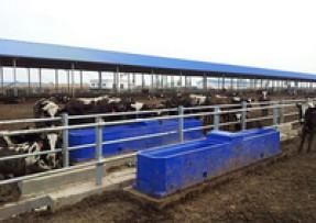 畜牧养殖保温饮水槽